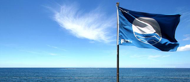 Blue Flag 2020